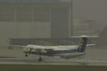 新賢さんが、伊丹空港で撮影した全日空 DHC-8-400の航空フォト(写真)
