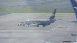 JA8062さんが、成田国際空港で撮影したスカイ・アヴィエーション 737-2W8/Advの航空フォト(飛行機 写真・画像)