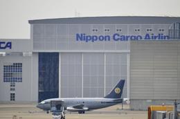 N787EXさんが、成田国際空港で撮影したスカイ・アヴィエーション 737-2W8/Advの航空フォト(飛行機 写真・画像)
