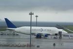 rjnsphotoclub-No.07さんが、中部国際空港で撮影したボーイング 747-409(LCF) Dreamlifterの航空フォト(写真)
