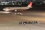 turt@かめちゃんさんが、伊丹空港で撮影した日本航空 A300B4-622Rの航空フォト(写真)