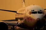 福岡空港 - Fukuoka Airport [FUK/RJFF]で撮影された日本トランスオーシャン航空 - Japan Transocean Air [NU/JTA]の航空機写真