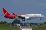 Scotchさんが、成田国際空港で撮影した深圳航空 737-8ALの航空フォト(飛行機 写真・画像)