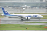 snow_shinさんが、羽田空港で撮影した全日空 787-8 Dreamlinerの航空フォト(写真)