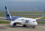 しゅあさんが、羽田空港で撮影した全日空 787-8 Dreamlinerの航空フォト(写真)
