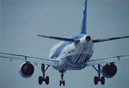 鼻たれ小僧さんが、伊丹空港で撮影した全日空 A320-211の航空フォト(写真)