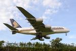 ウッディさんが、成田国際空港で撮影したシンガポール航空 A380-841の航空フォト(飛行機 写真・画像)