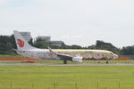 matsuさんが、成田国際空港で撮影した中国国際航空 737-89Lの航空フォト(写真)