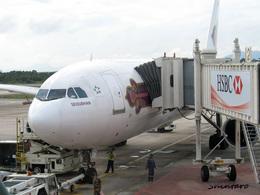 Shintaroさんが、ハートヤイ国際空港で撮影したタイ国際航空 A300B4-622Rの航空フォト(飛行機 写真・画像)