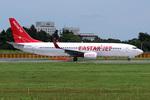 Tomo-Papaさんが、成田国際空港で撮影したイースター航空 737-8Q8の航空フォト(写真)