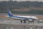 コウさんが、成田国際空港で撮影した全日空 A320-214の航空フォト(写真)