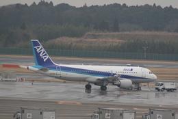 コウさんが、成田国際空港で撮影した全日空 A320-214の航空フォト(飛行機 写真・画像)