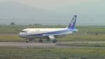 Satoshi さんが、米子空港で撮影した全日空 A320-211の航空フォト(写真)