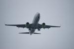 m-takagiさんが、羽田空港で撮影したソラシド エア 737-81Dの航空フォト(写真)