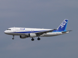 MIL26Tさんが、新潟空港で撮影した全日空 A320-211の航空フォト(飛行機 写真・画像)