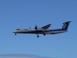 新潟空港 - Niigata Airport [KIJ/RJSN]で撮影されたエアーニッポンネットワーク - Air Nippon Network [EH/AKX]の航空機写真