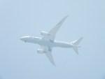 ヘリオスさんが、東京ヘリポートで撮影した全日空 787-8 Dreamlinerの航空フォト(写真)