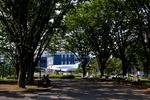 hirokongさんが、航空公園で撮影した全日空 YS-11A-500の航空フォト(飛行機 写真・画像)