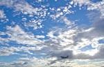 しゅあさんが、伊丹空港で撮影したジェイ・エア ERJ-170-100 (ERJ-170STD)の航空フォト(飛行機 写真・画像)