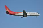 パンダさんが、成田国際空港で撮影した深圳航空 737-8Q8の航空フォト(写真)