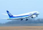 パンダさんが、広島空港で撮影した全日空 787-8 Dreamlinerの航空フォト(飛行機 写真・画像)