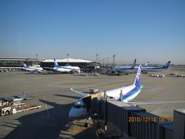michaelさんが、成田国際空港で撮影した全日空 A320-214の航空フォト(飛行機 写真・画像)