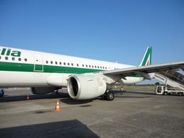 napoliさんが、カターニア・フォンターナロッサ空港で撮影したアリタリア航空 A321-112の航空フォト(飛行機 写真・画像)