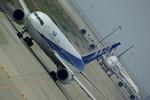 rjnsphotoclub-No.07さんが、関西国際空港で撮影した全日空の航空フォト(写真)