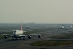 rjnsphotoclub-No.07さんが、関西国際空港で撮影したアシアナ航空 747-48EMの航空フォト(写真)