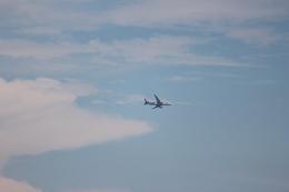 dianaさんが、北九州空港で撮影した全日空 787-8 Dreamlinerの航空フォト(飛行機 写真・画像)