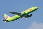 パンダさんが、成田国際空港で撮影したシベリア航空 A320-214の航空フォト(飛行機 写真・画像)