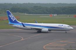 はみんぐばーどさんが、新千歳空港で撮影した全日空 737-881の航空フォト(飛行機 写真・画像)