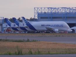 ツールーズ・ブラニャック空港 - Toulouse-Blagnac Airport [TLS/LFBO]で撮影されたエアバス・トランスポート・インターナショナル - Airbus Transport International [BGA]の航空機写真