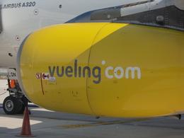 michaelさんが、グラナダ空港で撮影したブエリング航空 A320-232の航空フォト(飛行機 写真・画像)