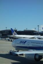 m-takagiさんが、成田国際空港で撮影した全日空 777-381/ERの航空フォト(飛行機 写真・画像)
