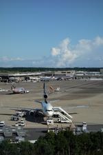 m-takagiさんが、成田国際空港で撮影したUPS航空 MD-11Fの航空フォト(飛行機 写真・画像)