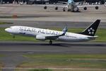 WING_ACEさんが、羽田空港で撮影した全日空 737-881の航空フォト(飛行機 写真・画像)