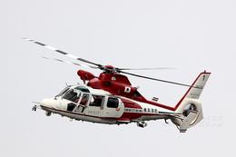 sky123さんが、横浜市西区みなとみらい21中央地区耐震バースで撮影した横浜市消防航空隊 AS365N2 Dauphin 2の航空フォト(写真)