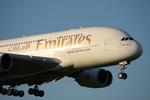 WING_ACEさんが、成田国際空港で撮影したエミレーツ航空 A380-861の航空フォト(飛行機 写真・画像)