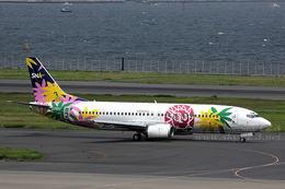 sky123さんが、羽田空港で撮影したスカイネットアジア航空 737-43Qの航空フォト(写真)