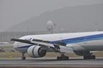 あっしーさんが、伊丹空港で撮影した全日空 777-381/ERの航空フォト(写真)