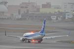 あっしーさんが、伊丹空港で撮影した全日空 737-781の航空フォト(写真)