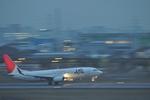 あっしーさんが、伊丹空港で撮影したJALエクスプレス 737-846の航空フォト(写真)