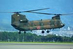 rjnsphotoclub-No.07さんが、静岡空港で撮影した陸上自衛隊 CH-47Jの航空フォト(写真)
