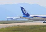 ふじいあきらさんが、広島空港で撮影した全日空 787-8 Dreamlinerの航空フォト(写真)
