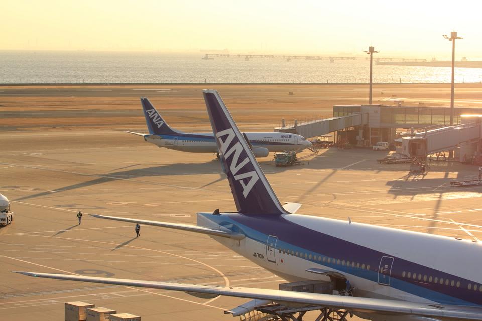 ふじいあきらさんの全日空 Boeing 737-800 (JA55AN) 航空フォト