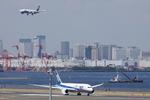 SKYLINEさんが、羽田空港で撮影した全日空 787-8 Dreamlinerの航空フォト(写真)