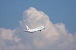 SKYLINEさんが、羽田空港で撮影した日本航空 737-846の航空フォト(飛行機 写真・画像)