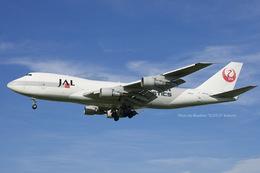 名古屋空港 - Nagoya International Airport [NGO/RJNN]で撮影された日本航空 - Japan Airlines [JL/JAL]の航空機写真