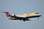 パンダさんが、成田国際空港で撮影したアイベックスエアラインズ CL-600-2B19 Regional Jet CRJ-100LRの航空フォト(飛行機 写真・画像)
